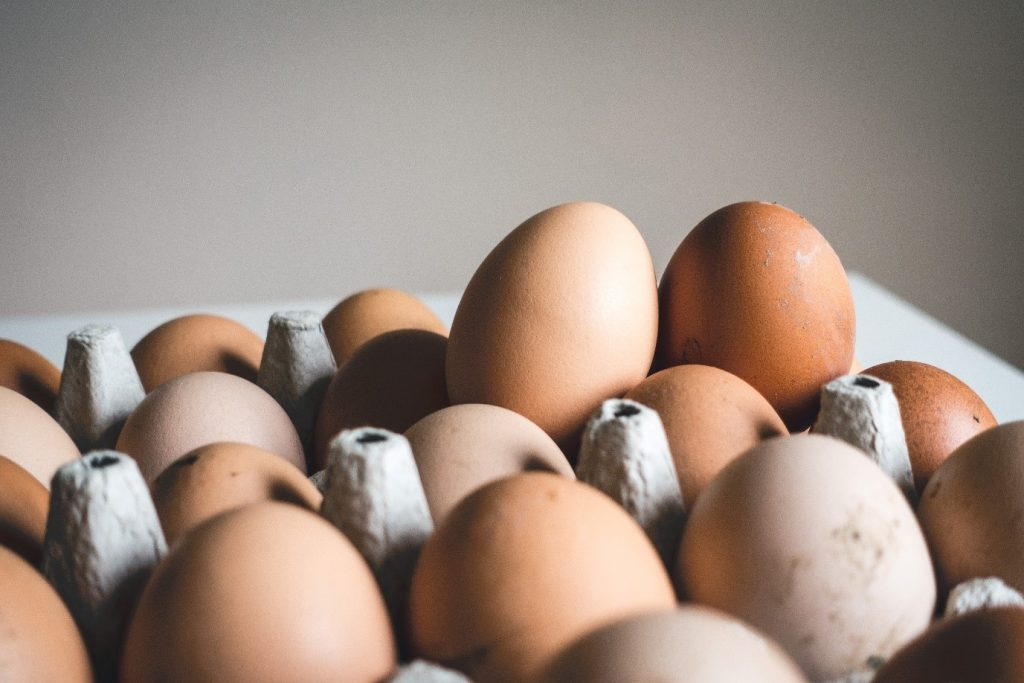 Are Eggs Considered Dairy Products